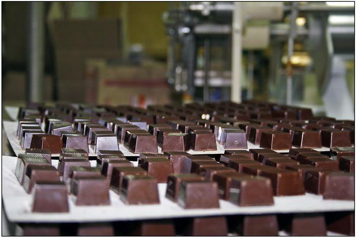 Миниатюра для: «Шоколадное дерево» откроет по франшизе точки в Томске, Иркутске и Юрге