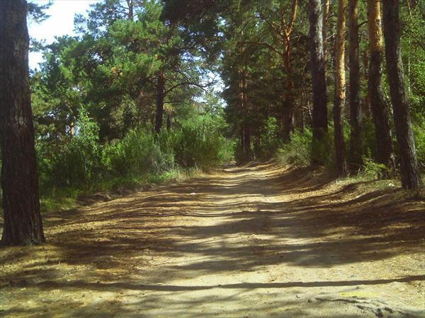 Фото - vkemerovo.net