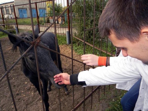Фото: www.sibupk.su