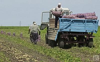Фото сайта www.bel.ru