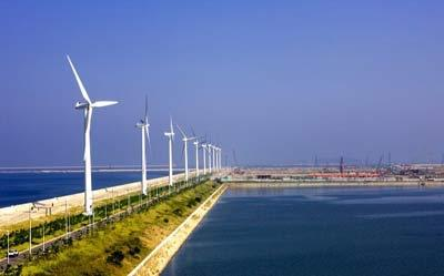 Экономическая ценность возобновляемых природных ресурсов в Томской области составляет более 15 млрд. руб. при ежегодном использовании. Фото: russian.cri.dgmei.com