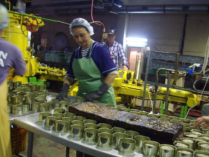 На малых предприятиях Новосибирской области занято 20% от общего количества сотрудников предприятий малого бизнеса по СФО. Фото: vestihasan.ru