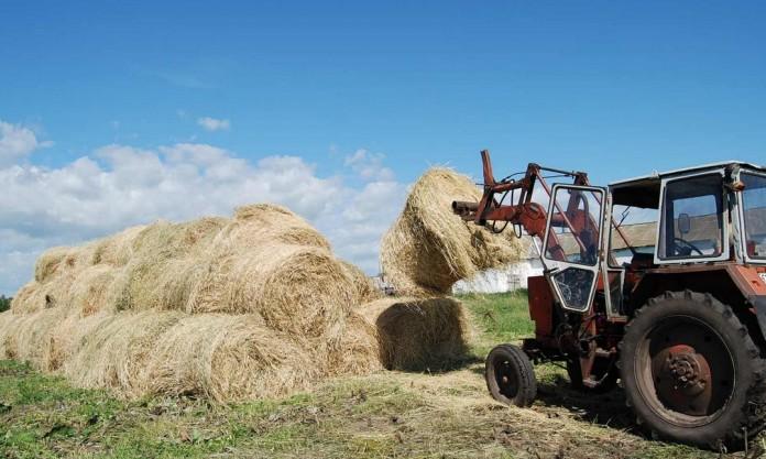 В 2015 году объём господдержки фермеров в Новосибирской области увеличился более чем на 50 млн руб.