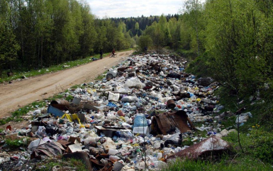 В Новосибирске существуют места, где постоянно формируются несанкционированные свалки.