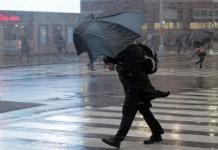 Порывы ветра в Новосибирской области могут достигать 24 м/с.