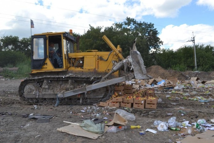 Уничтожение бульдозером польских яблок на спецплощадке в Новосибирске.