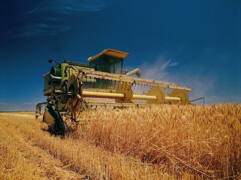 Более полумиллиарда рублей затратит на уборку урожая Новосибирская область.