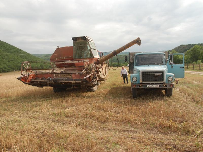 Урожайность посевов в Алтайском крае достигает астрономической цифры в 66 центнеров с га.