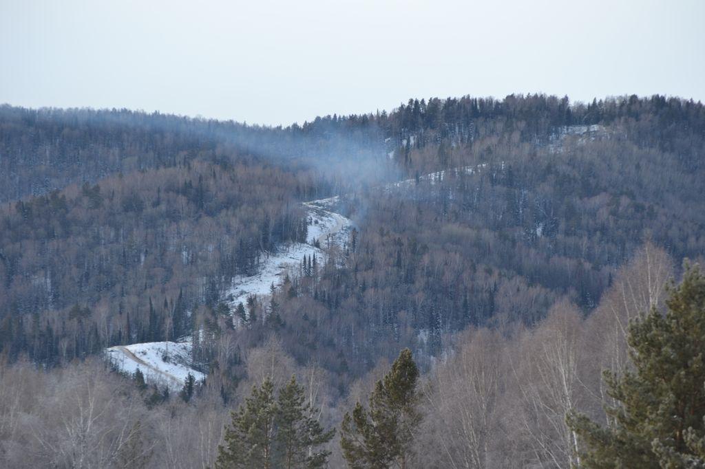 Просека для первой трассы нового горнолыжного курорта, возводимого в рамках субкластера «Белокуриха-2», уже проложена по склону горы Глухариной.