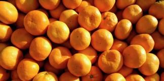 16 тонн мандаринов были возвращены из НСО отправителю за попытку ввезти груз по поддельным бумагам.