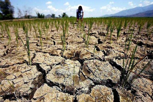 ущерб от засухи