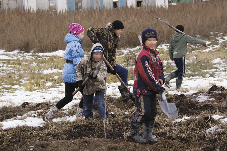Высаживать деревья вышли даже дети