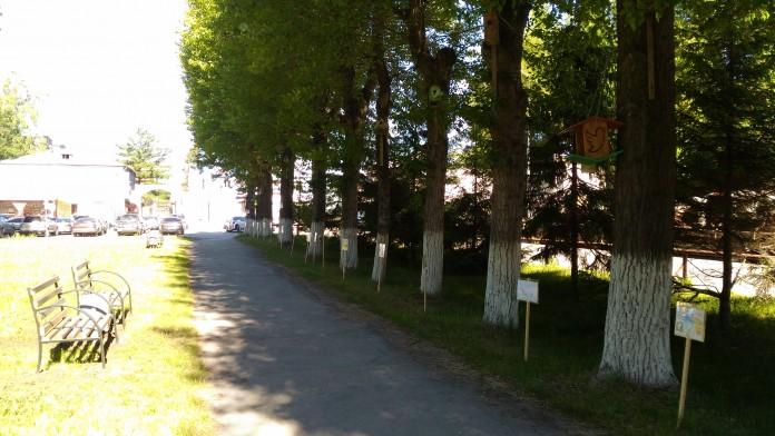Миниатюра для: ЭЛСИБ благоустроит парковую зону