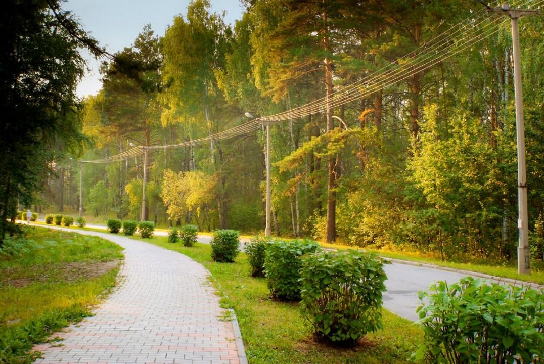 Мэрия планирует обустроить новый сквер в Академгородке