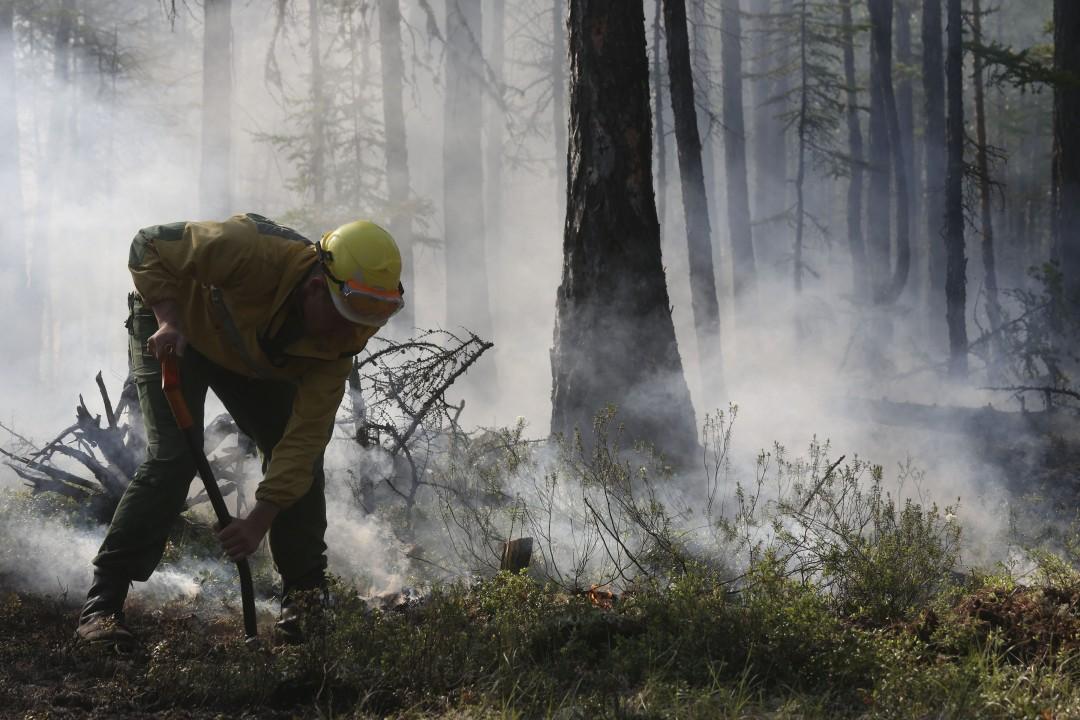 Почти половина площади горящих в России лесов приходится на территорию Забайкальского края