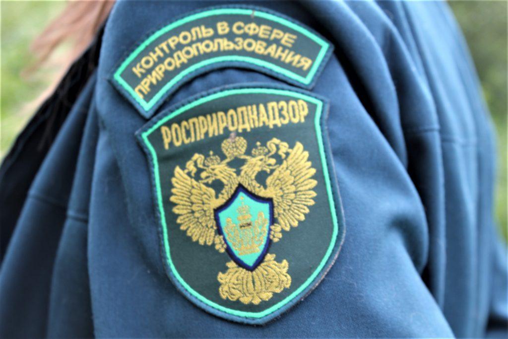 Руководить омским Росприроднадзором стал красноярский замглавы ведомства