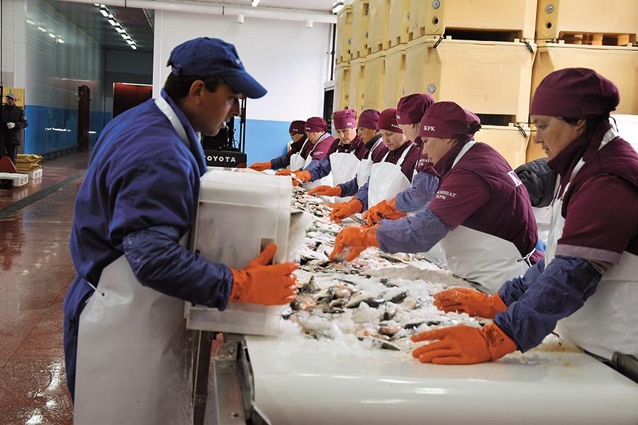 Рыбозавод — предприятие группы «Камшат»