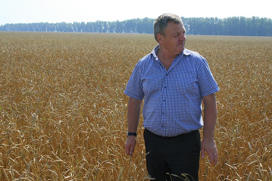 Министр сельского хозяйства Новосибирской области Василий Пронькин