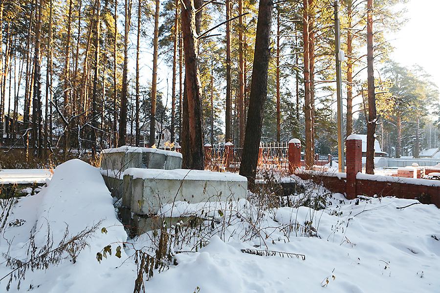 Новосибирск защищает свою землю