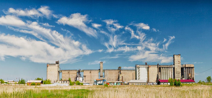 Татарский район – в числе лидеров по производству зерна