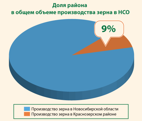 Доля района в общем объеме производства зерна в НСО