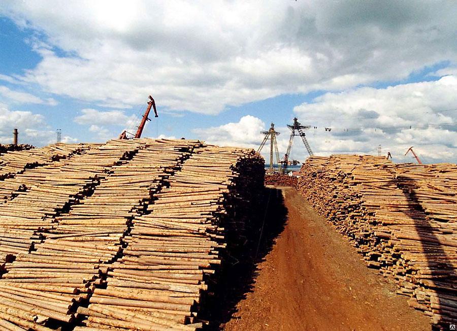 Лесопромышленный комплекс поглубокой переработке древесины натерритории Кыштовского иСеверного районов НСО компании «Сибирский ЛПК»
