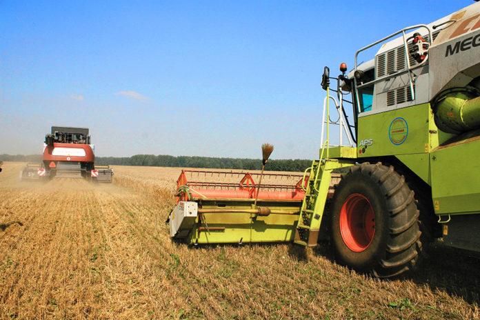 Правительство России компенсирует новосибирским аграриям потери