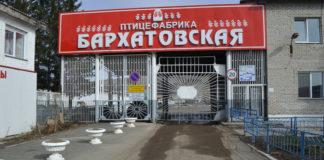 «Бархатовская» птицефабрика