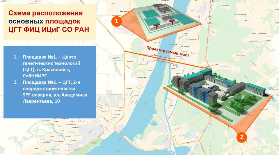 Какие проекты развития «Академгородка 2.0» будут запущены в первую очередь? - Фото