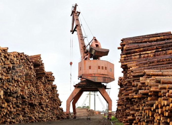 Почему «Большая медведица» требует 160 млн рублей