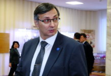 Депутаты проголосовали за создание вокруг Новосибирска «зеленого пояса»