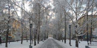 Сильные морозы задержатся в Новосибирске до Нового года