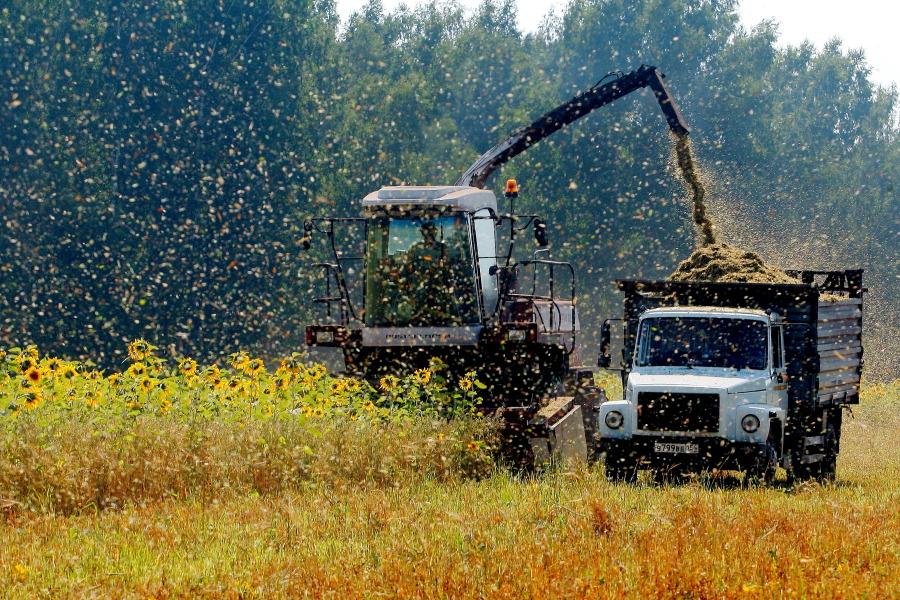 В 2019 году на развитие растениеводства Омской области направят 1,5 млрд рублей