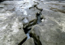 В первый день весны в Новосибирске ожидается плюсовая температура