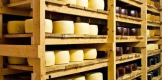 Россельхозбанк вложит 19 млрд рублей в строительство молочного завода в Новосибирской области