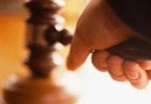 Начальник Департамента лесного хозяйства Томской области стал фигурантом уголовного дела
