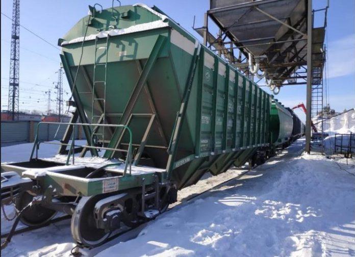 Зерно из Новосибирской области отправят на экспорт в рамках нацпроекта