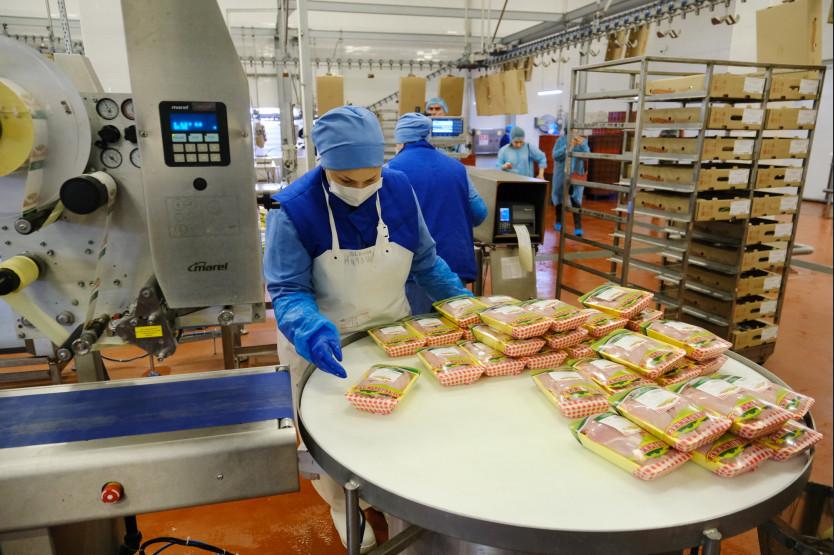 Мясо кур из Новосибирской области отправят на экспорт в рамках нацпроекта