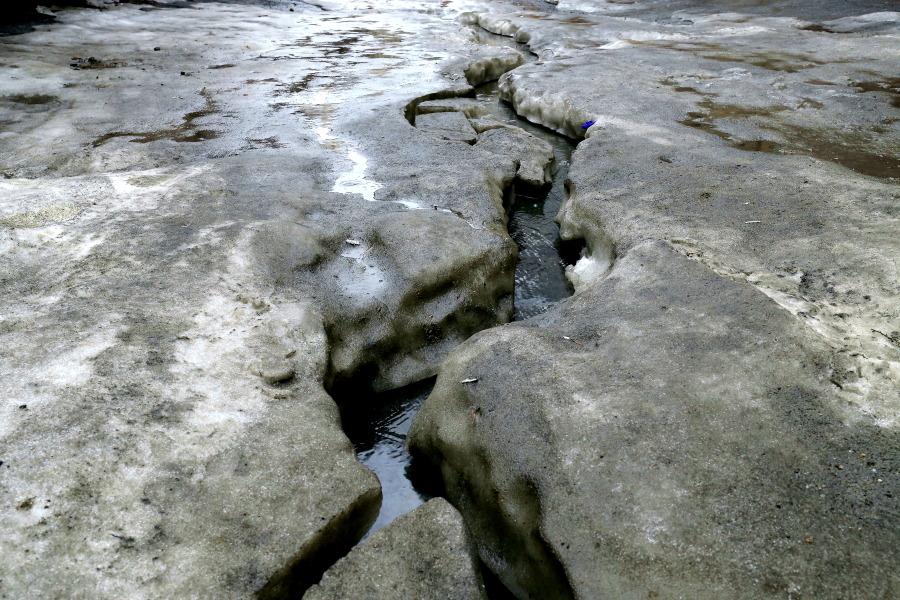 В Новосибирске ожидаются плюсовая температура и мокрый снег с дождем