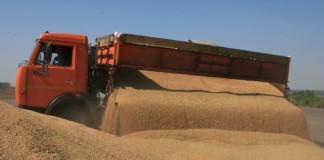 Новосибирская область увеличит объемы экспорта продукции АПК