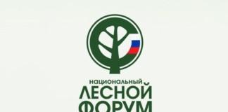 В Красноярске впервые пройдет Национальный лесной форум