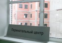 Перинатальный центр в Новосибирске планируют достроить в 2021 году