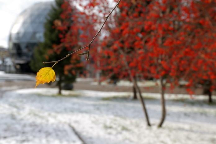 Оттепель в Новосибирске сменится похолоданием и ветром