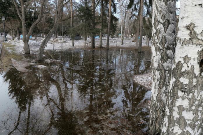 Зима не отступает: в Новосибирск придут порывистый ветер и мокрый снег