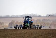 Аграрии Красноярского края получили более 1 млрд рублей господдержки