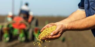 Россельхозбанк направил на проведение посевных работ в Новосибирской области более 2 млрд рублей
