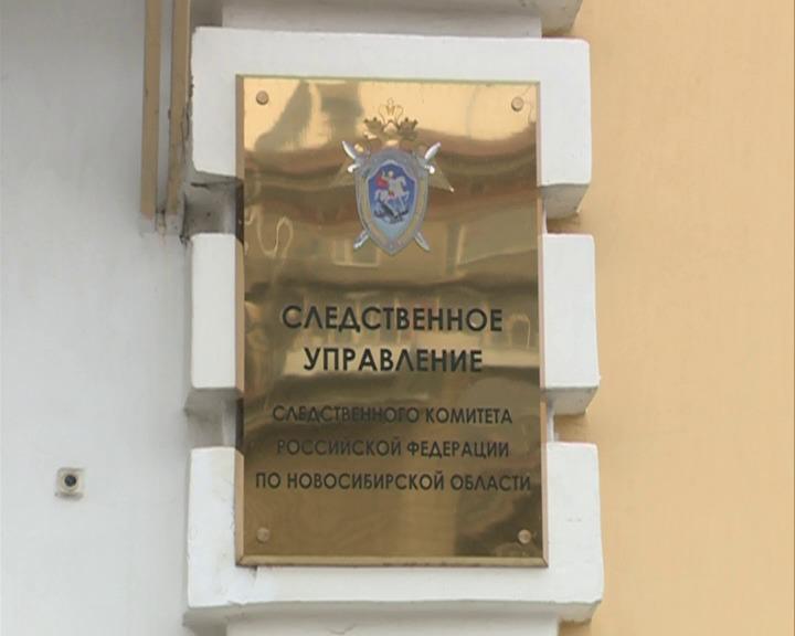 Сотрудника сельсовета Новосибирского района обвиняют в хищении земельных участков