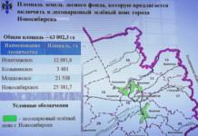 Площадь «зеленого пояса» вокруг Новосибирска хотят увеличить