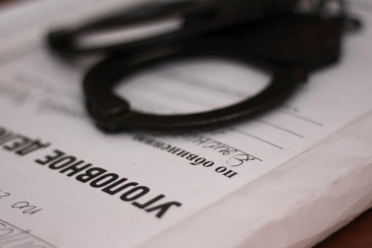 Начальник отдела лесничества в Иркутской области подозревается в служебном подлоге
