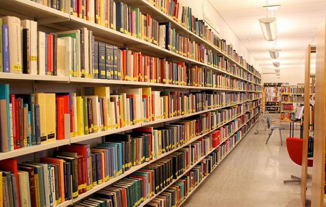 На создание модельной библиотеки в Рубцовске направят 1,8 млн рублей
